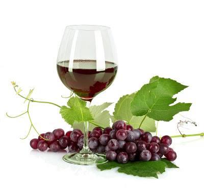 0e0ad07522df Vinárska stodola - kvalitné slovenské ví - Katalóg firiem